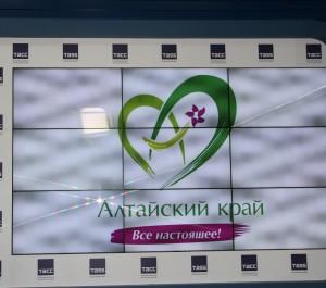 Александр Карлин принял участие в пресс-конференции по вопросам туризма.в информагентстве «ТАСС» в Москве