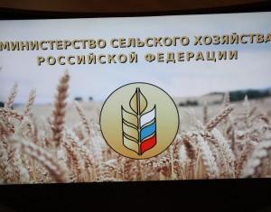Эксперты рабочей группы «Сельское хозяйство» Госсовета России обсудили вопросы кадрового обеспечения агропромышленного комплекса страны